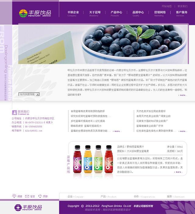 蓝莓饮品生产企业网站首页面