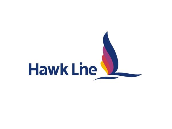 新加坡船务公司品牌形象设计3.jpg