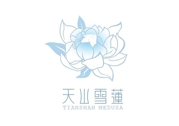 新疆天山雪莲.jpg