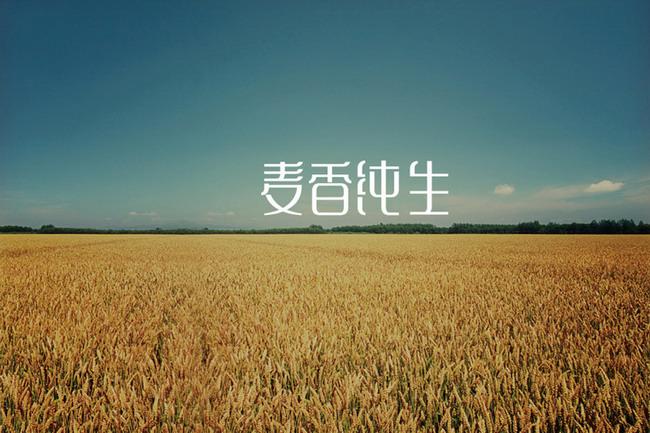 字体设计1.jpg