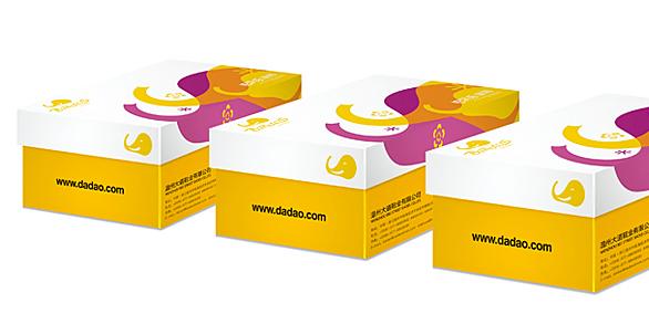 童鞋品牌形象5.jpg