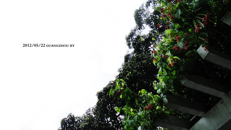 落雨 006.jpg