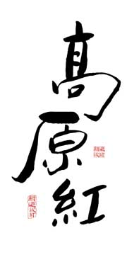 高原红 书法 滇红茶 新道设计 字体设计.jpg