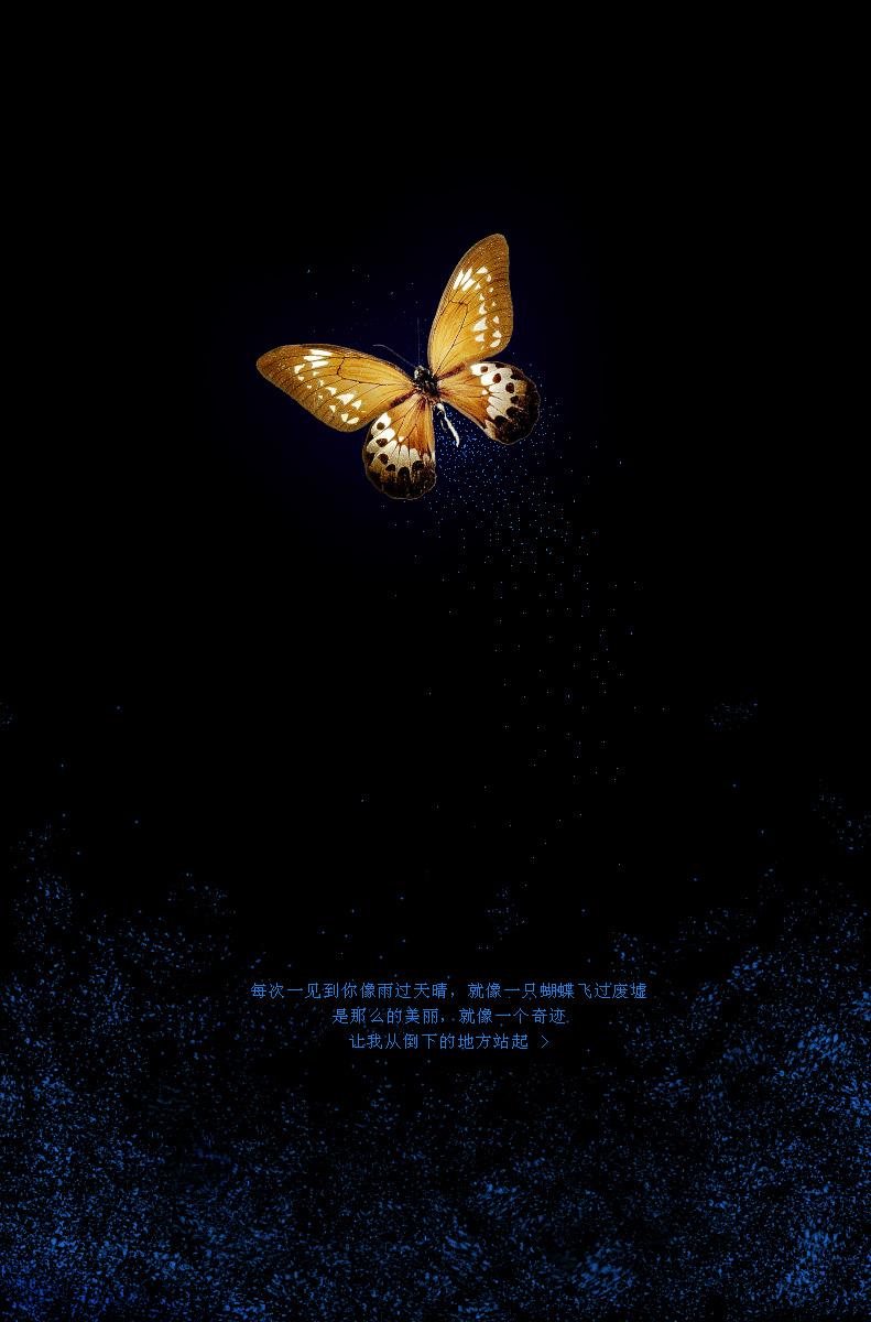 012 蝴蝶效应-陶吉吉的蝴蝶.jpg
