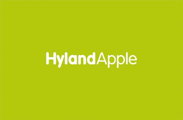 鹤立苹果标志VI设计呼吸设计公司 (5).jpg