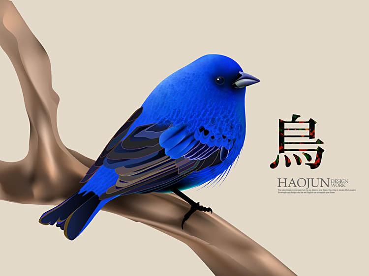 鸟-01.jpg