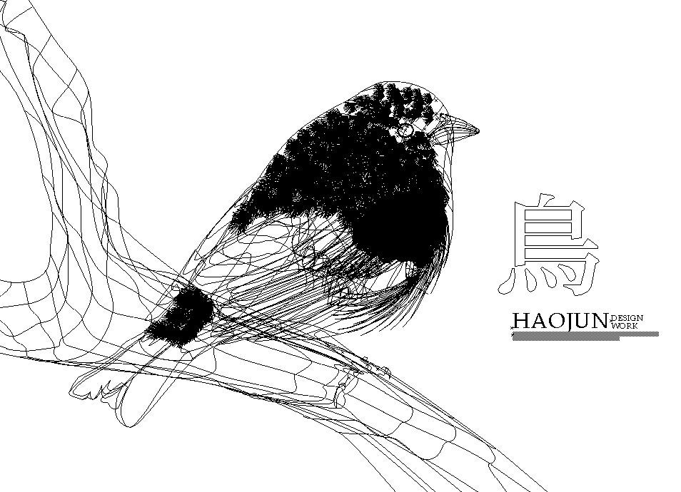 鸟-01~.jpg