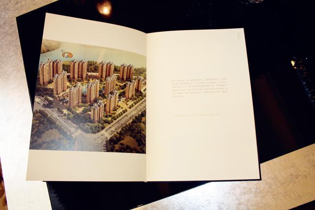 楼书6.jpg