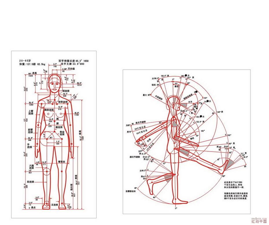 人机工程图