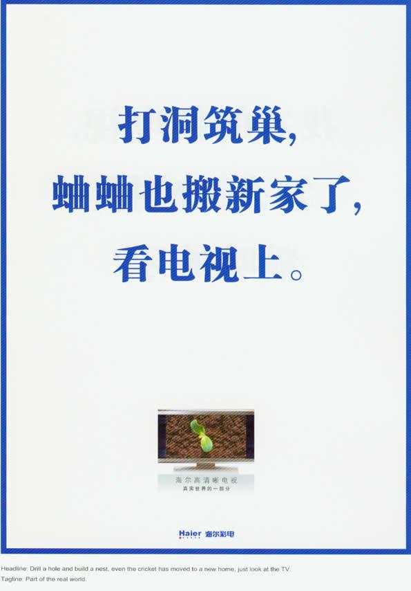 20070313060416111.jpg