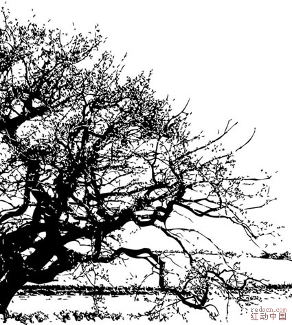 黑白树(绝无仅有)