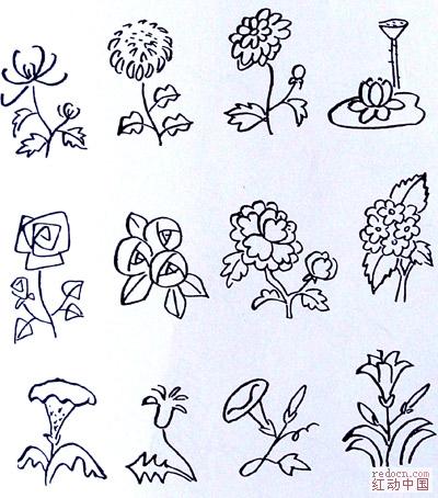 关于植物的简笔画-简笔