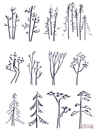 超好看的植物简笔画