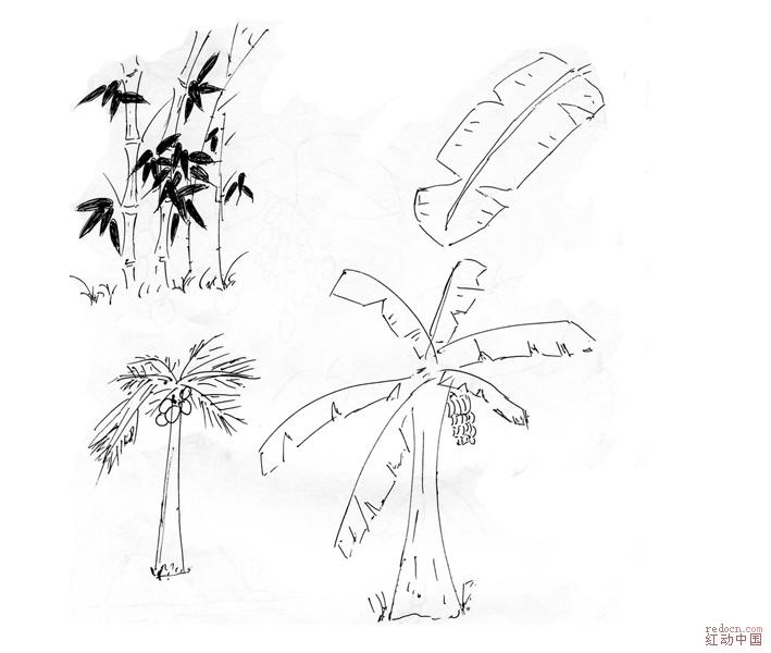 植物简笔画玫瑰花-纸箱 回收废报纸 回收废