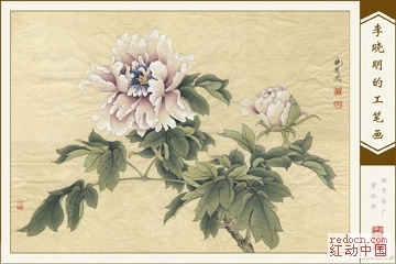 高清李曉明工筆畫(收錄其各時期作品:牡丹