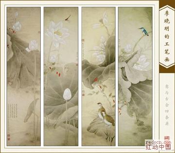 李晓明工笔荷花白描及设色步骤图