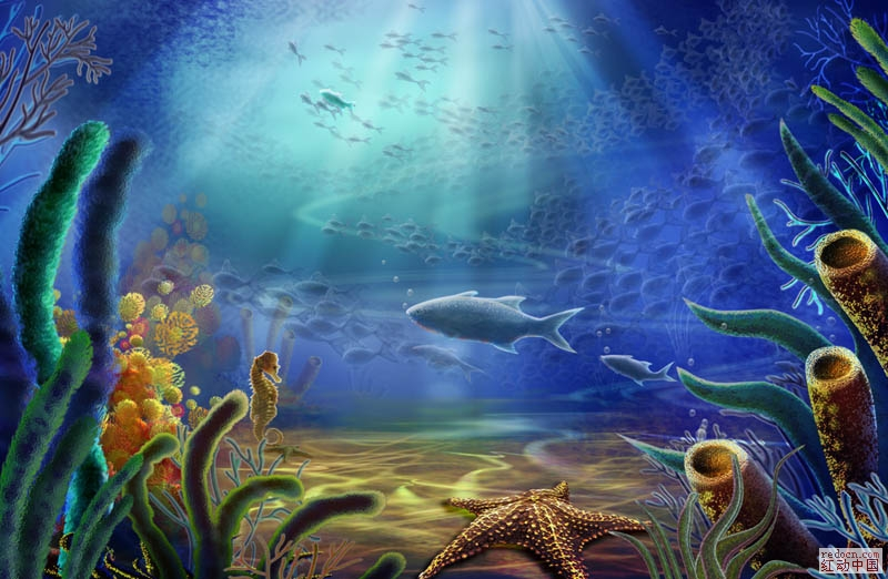 海底世界-海星,海马,鱼群,海草psd分层素材