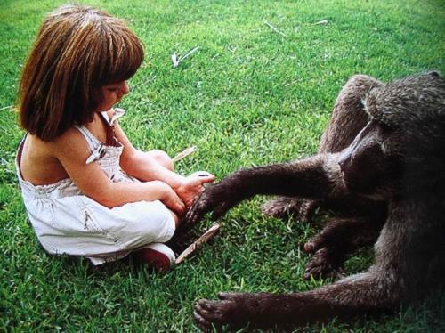 人与野生动物-勇敢的女孩!