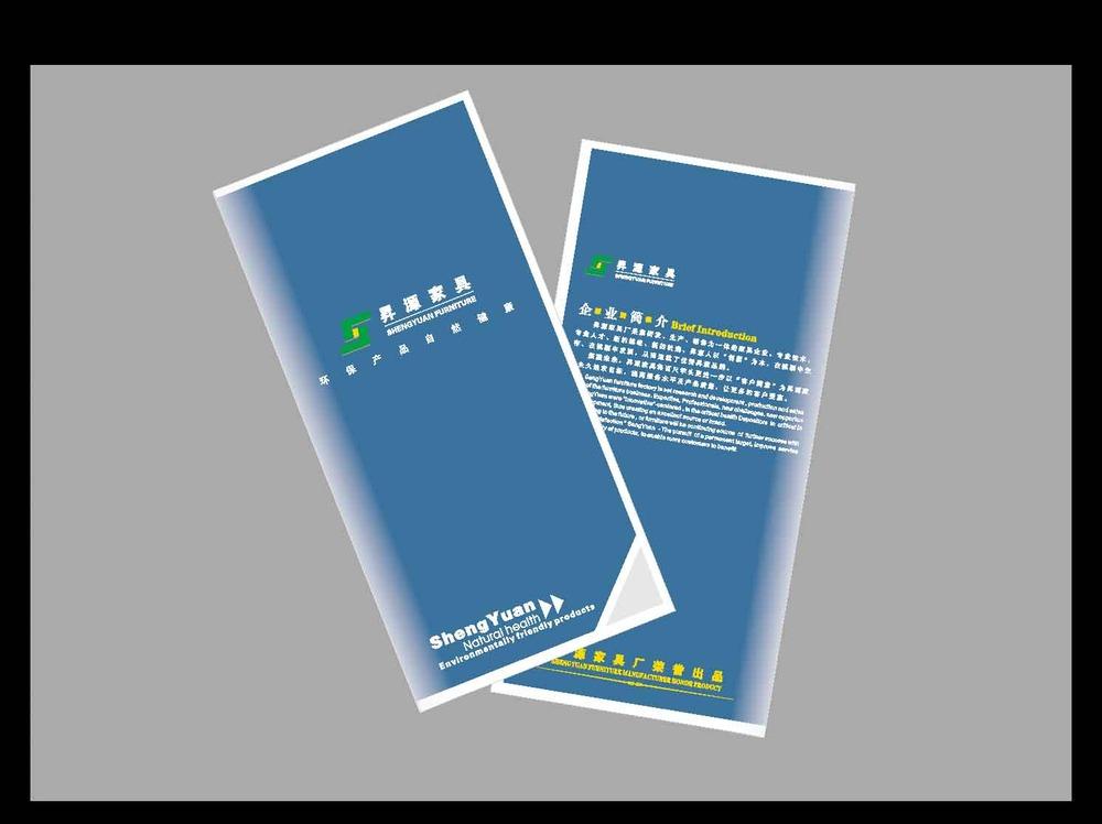 在不行真晕了 - 折页招贴单-原创设计 - 第一设计