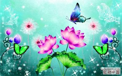 精美荷花 梦幻仙境 花草树木 自然生态