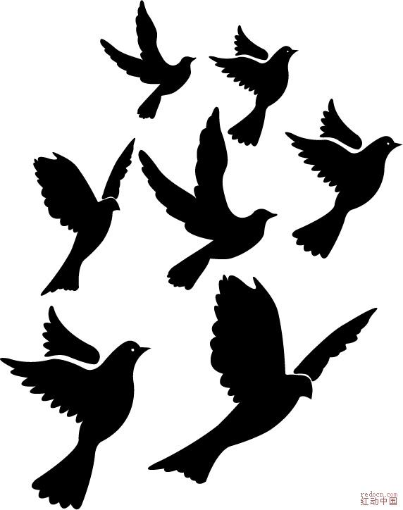 矢量6款鸽子图样_矢量素材_素材下载_资讯娱乐 专业网