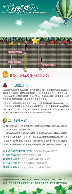 东莞婚纱城a4宣传单,易拉宝,展会展板背景