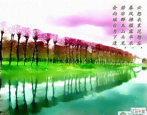 20100715_f70ab8fe4b9f8e3273bcocYlVFnzU0rb[1].jpg