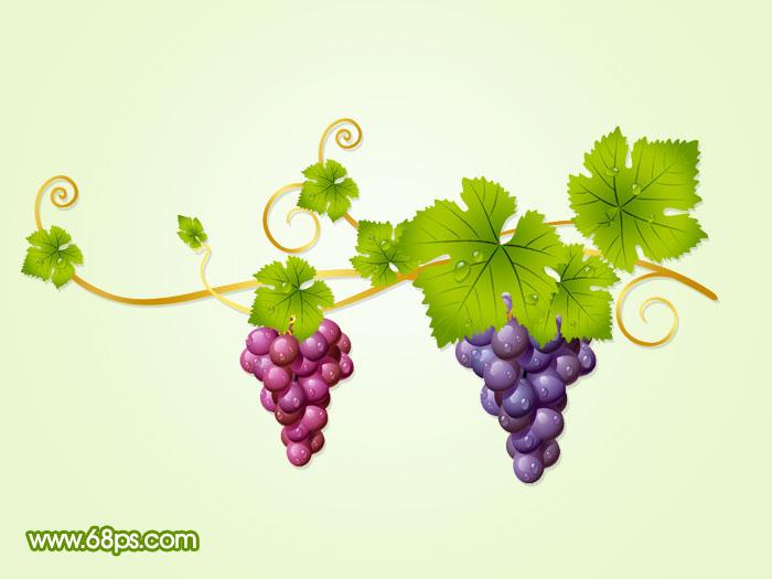 鼠绘漂亮的葡萄及藤蔓_鼠绘/绘画_鼠绘_photoshop教程