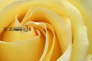 图片标题:别处学摄影--别处拾色 关键字:设计图片  加入时间:2009-7-26 22:53 加入作者:redocn
