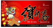 传统新年彩色 简笔画 舞狮,看灯 全部1个包