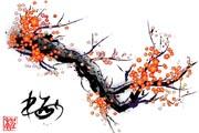 图片标题:罕见的梅花 极品花纹 关键字:梅花.jpg  加入时间:2008-12-1 21:55 加入作者:阿Q第二