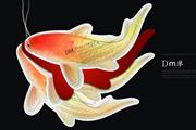 图片标题:feiwa 09前部分作品整理 关键字:4e50170806e3ec827fab8.jpg  加入时间:2009-2-12 10:36 加入作者:redocn