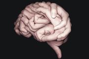 图片标题:大脑创意海报 关键字:联合海报  加入时间:2010-4-11 01:03 加入作者:redocn
